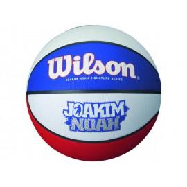 Wilson JOAKIM NOAH
